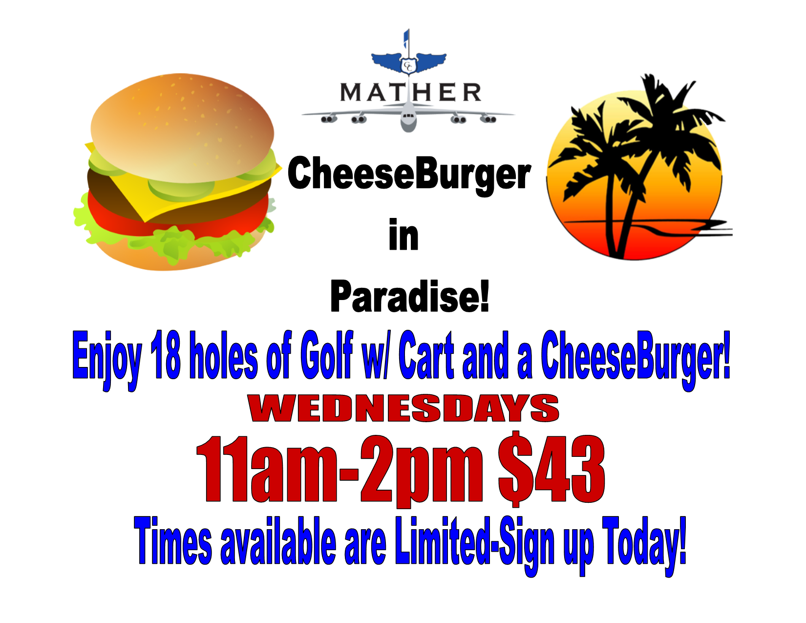 Cheeseburger in paradise promo 2017